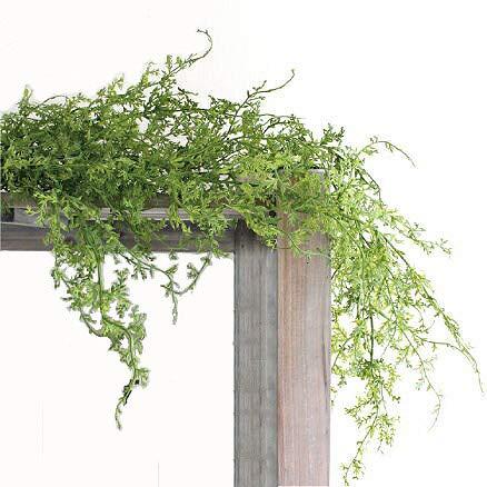 コーラルファーン ハンギングブッシュ 観葉植物 造花 ミニ インテリア 消臭 CT触媒 フェイクグリーン 人工 ...