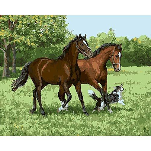 Pintura al óleo por números para adultos caballo gato Animal pintura por número decoración moderna del hogar Artcraft A9 45x60cm