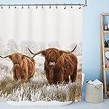 AMBZEK Bull Duschvorhang Highland Kuh Bauernhaus 183 x 183 cm (B x L) Walking Animal Duschvorhang Wildlife Funny Rinder Western Brown Badzubehör Bauernhof Rustikales Badezimmer-Dekor-Set mit 12 Haken