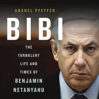 Bibi audiobook cover art