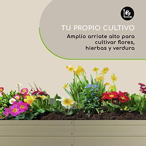 Blumfeldt High Grow Straight bancal - Macetero, Flores, Hierbas y ...