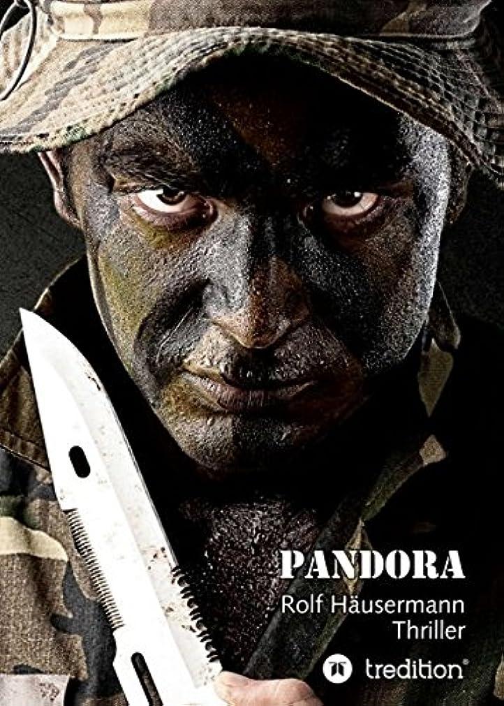道を作るプレビスサイト弓Pandora