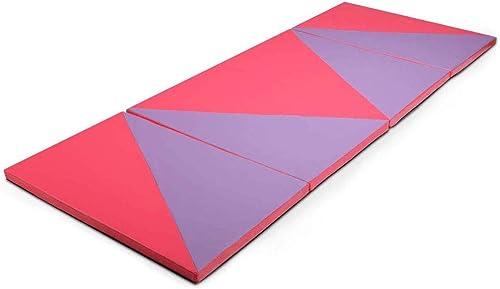 Giantex Gymnastics Mat, 4'x10'x2 Extra Thick Anti-Tear Folding Gymnastics Exercise Mat w/Carrying Handle, Hook and Loop Fastener, Panel Mat for Gymnastics, Exercise, Aerobics, Stretching