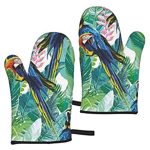 Bokueay Colorful Parrots Tropic Guantes de Cocina Kitchen Long Microwave Guantes de cocinaGuante Resistente al calorfor Agarraderas Cooking Food Frying Baking Premium Durable Mitts -1 Pair