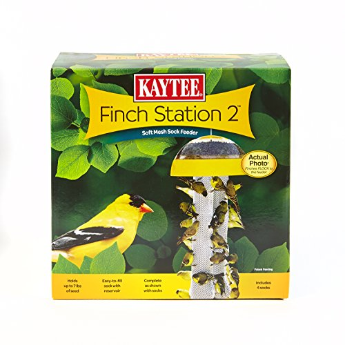Kaytee Finch Feeder