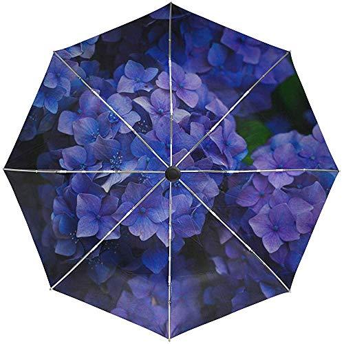 Automatischer Regenschirm Hortensie Blütenstände Blüte Reise Bequem Winddicht Wasserdicht Falten Auto Öffnen Schließen