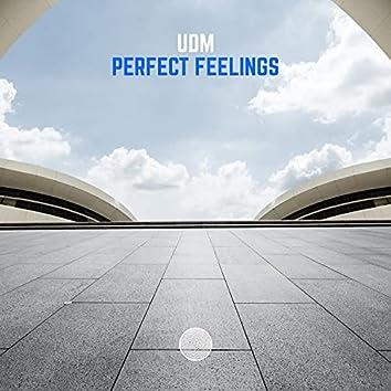 Perfect Feelings