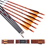 Pinals Archery 300 340 400 Spine Carbon Arrows for Compound Bows Traditional Recurve Bow Longbow 30 Inch Shafts Hunting Target Arrow 12PCS(TPU Vanes 400 30')