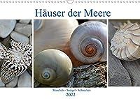 Haeuser der Meere: Muscheln - Seeigel - Schnecken (Wandkalender 2022 DIN A3 quer): Sammelobjekte aus Sand und Meer (Monatskalender, 14 Seiten )