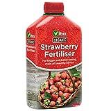 Fertilizante orgánico Vitax frutillita concentrarme - 1 litro - comida para fresas - homogeneizables para plantas de fresa