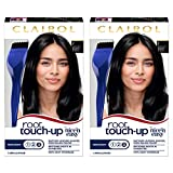 Clairol Root Touch-Up Permanent Hair Dye, 2 Black Hair Color, 2 count