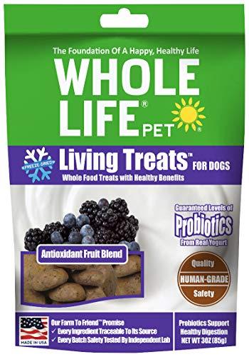 Whole Life Pet Antioxidant Dog Treats Fruit...