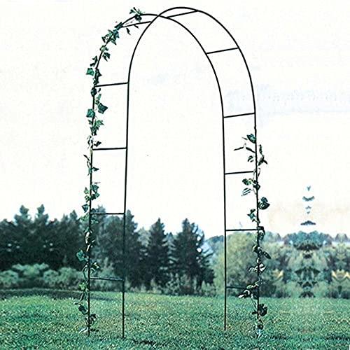 Gartenbögen, eiserne Rosenbäume, verschiedene Kletterpflanzen im Freien Garten Rasen Hinterhof Clematis Klettergerüst/Grün / 140×40×240CM