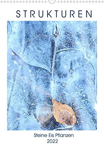Strukturen - Steine, Eis, Pflanzen (Wandkalender 2022 DIN A3 hoch)