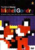 Gondry Michel - The Work Of A Director