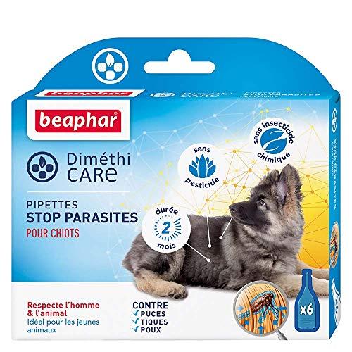 Beaphar - Pipetas de parásitos para cachorros, 6 pipetas para perros