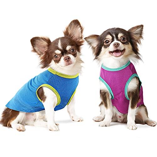 IREENUO Ireenuo Hunde-Shirt, 2 Stück, für kleine Hunde und Katzen, schnelltrocknend, atmungsaktiv, weich, für Welpen
