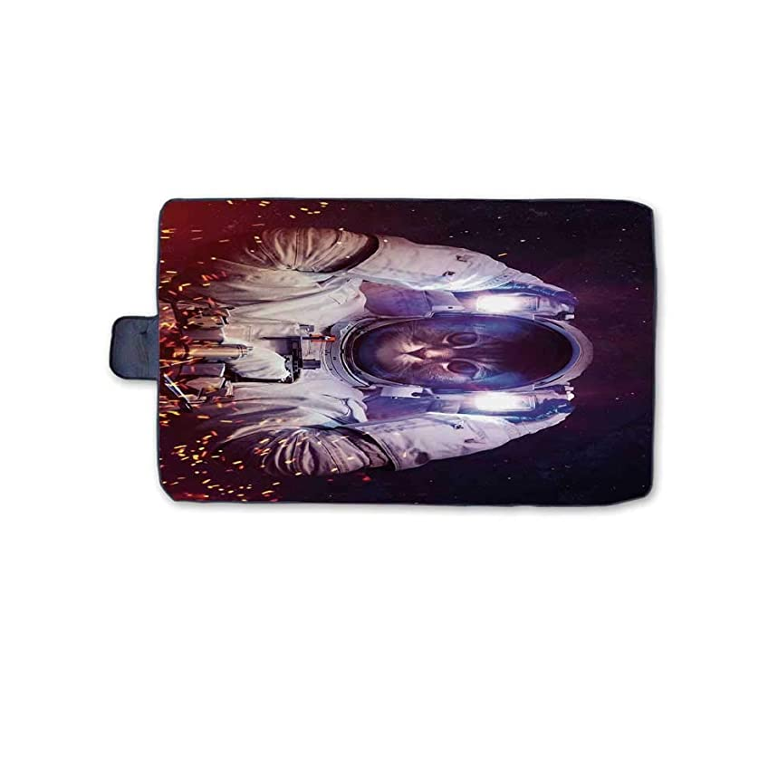 TecBillion Space Cat Outdoor Picnic Blanket,Astronaut Cat in Suit Outer Space Nebula Galaxy Cosmos Fire Mat for Picnics Beaches Camping,58