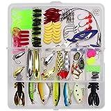 RoseFlower Señuelos de Pesca Kits de Señuelos Pesca Accesorios Cebos Artificiales Articulos Incluido la Caja Tackle, Ganchos, Tijeras, Cebos, Popper, Grillos y más con Accesorios