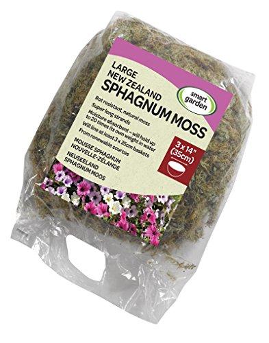 Frisches Sphagnum-Moos aus Neuseeland in einer Riesen-Verpackung