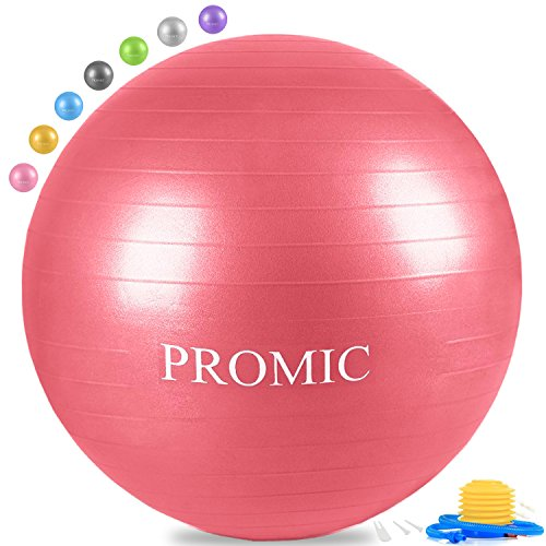 PROMIC Exercise Ball (55 cm) with Foot Pump