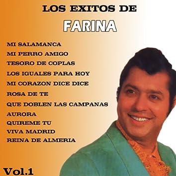 Los Exitos de Farina