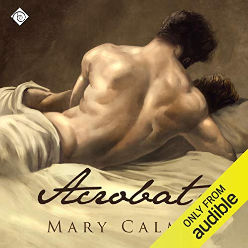 Acrobat audiobook cover art