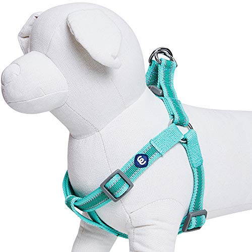 """Blueberry Pet Essentials Step-in Reflective Back to Basics Dog Harness, Minty Green, Chest Girth 26"""" - 39"""", Large, Adjustable Harnesses for Dogs"""