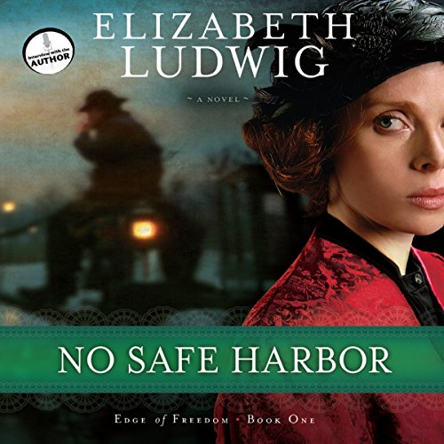 Couverture de No Safe Harbor