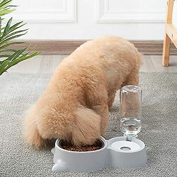 shangji 2 in 1 Distributeur de Nourriture Eau Fontaine Automatique pour Animaux Croquettes Accesoires Gamelle Animaux Domestiques (Gris)
