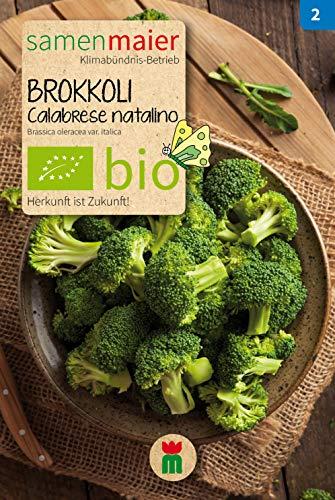 BIO Brokkoli, Calabrese natalino (Brassica oleracea var. italica)