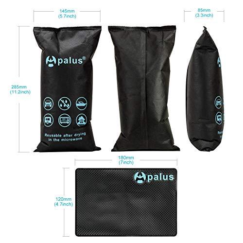 Apalus AP-005