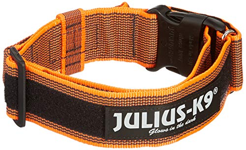 Julius-K9 Collar con Asa 50Mm Naranja 1 Unidad 350 g