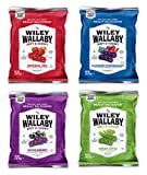 Wiley Wallaby Australian Licorice Fruit Variety Snack Peak Gift Box