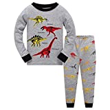 Topgrowth - Pijama de dinosaurio para niño, camiseta de manga larga para niña, sudadera + pantalones con impresión de cómic para niña, pijamas, dos piezas gris 2 años