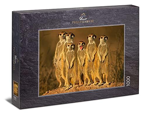 Ulmer Puzzleschmiede - Puzzle 'Suricata': Puzzle de 1000 piezas - Motivo de rompecabezas de un divertido grupo de suricatas en África