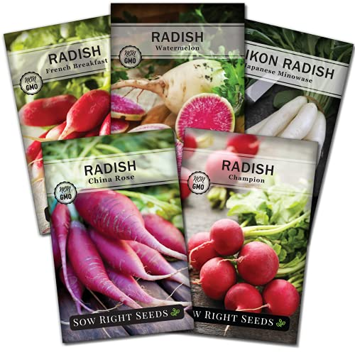 Sow Right Seeds - Radish Seed Collection for Planting - Champion, Watermelon,...