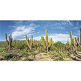 AWERT Fondo de terrario de vinilo duradero de 61 x 30 cm, color azul, Oasis Cactus Gobi Reptile Habitat (No pegatina)