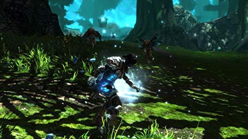 51Cu+i3 cnL - Kingdoms of Amalur Re-Reckoning - PlayStation 4 Standard Edition