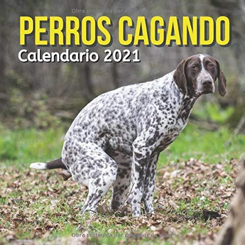 Perros Cagando Calendario 2021: Regalos Divertidos Para...