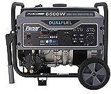Pulsar G65BN-A Portable Gas & LPG Dual Fuel Generator, 5500 Rated Watts & 6500 Peak Watts, RV Ready, CARB Compliant