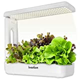 Ivation Herb Indoor Garden Kit | Complete Hydroponic Grow System for Herbs, Plants