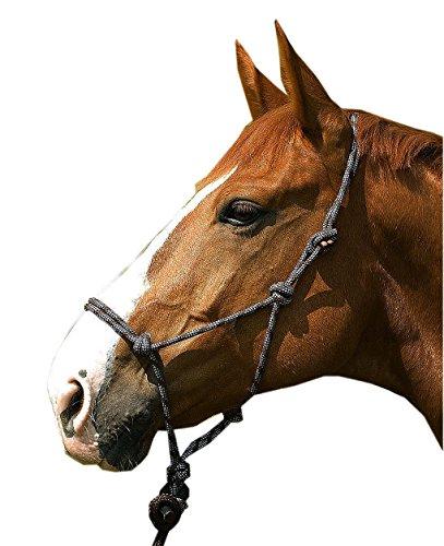 Cob oder Full netproshop Knotenhalfter mit F/ührstrick f/ür Bodenarbeit Auswahl Pony
