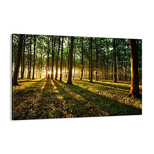 Cuadro sobre lienzo - Impresión de Imagen - Bosque verde sol rayos naturaleza - Imagen Impresión - Cuadros Decoracion - Impresión en lienzo - Cuadros Modernos - Lienzo Decorativo - (AB) 2510