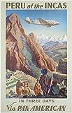 Forry Peru of The Incas Travel Metall Poster Retro