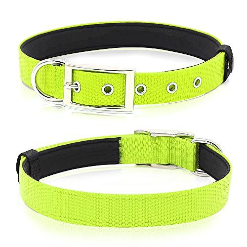 PZRLit Collar Perro Resistente con Suave Acolchado Neopreno, Hebilla de Metal y Anillo en D, Ajustable Transpirable Collares Perros Ancho para la Caminata Diaria Corriendo-Verde,Grande