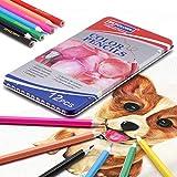 Lapices de Colores Profesionales, lapiz para colorear de Dibujo y Bosquejo Material de dibujo Set, Incluye Caja de Metálica Portátil,Mejores Lápices de colores Conjunto Ideal para Adultos y Niño