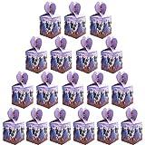 YUESEN Frozen Party Boxes Bolsas de fiesta Regalos para niños Fiestas de cumpleaños Favores Bolsas Mochila con cordón Bolsas Bolsas de gimnasia para niñas Fiesta de disfraces Fiesta de cumpleaños