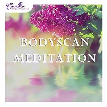 Guided Meditation Bodyscan