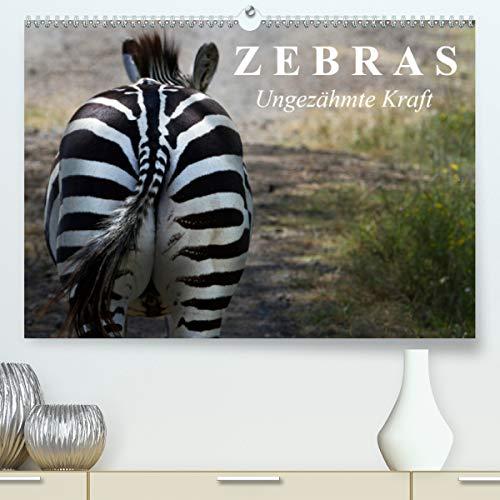 Calvendo Premium Kalender Zebras - Ungezähmte Kraft: Die gestreiften Wildpferde Afrikas (hochwertiger DIN A2 Wandkalender 2020, Kunstdruck in Hochglanz)
